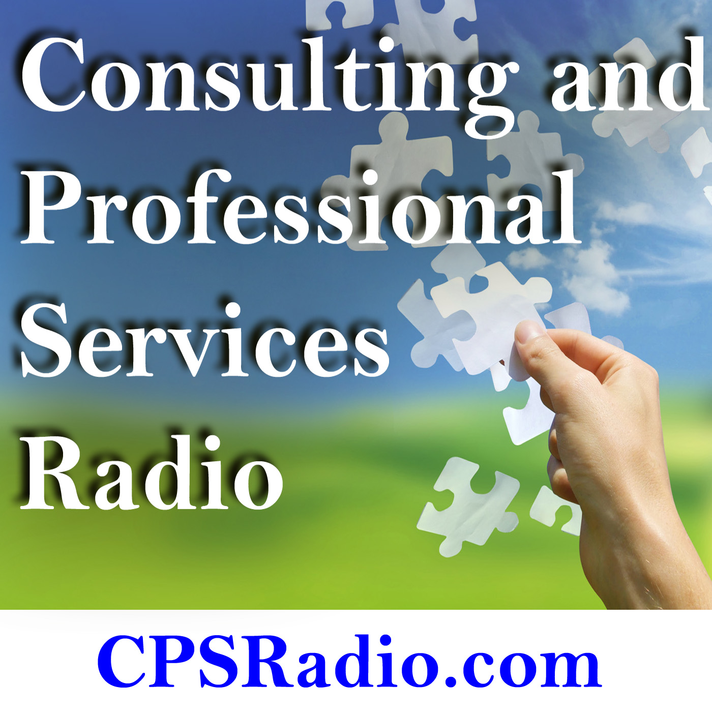 Consulting and Professional Services Radio
